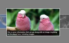3D图片旋转展示焦点图jQuery插件